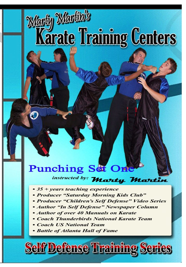 Punching Set One - Intermediate (16 videos)