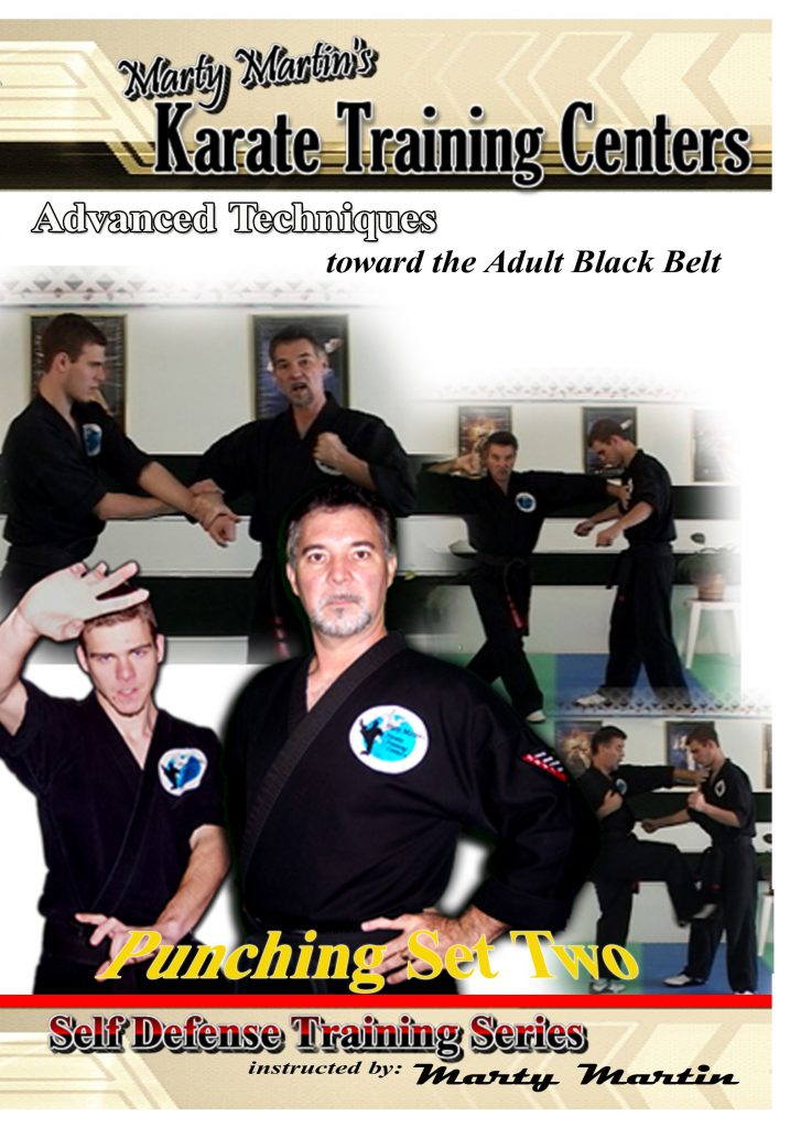 Punching Set Two - Advanced Level 1  (21 videos)